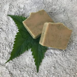 Beachcomber Shampoo Bar